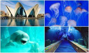 Океанографический паркв Валенсии