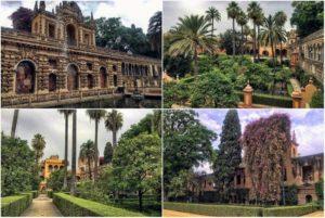 Королевские сады в Севилье