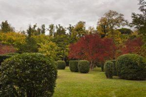 Сады в Аранхуэсе