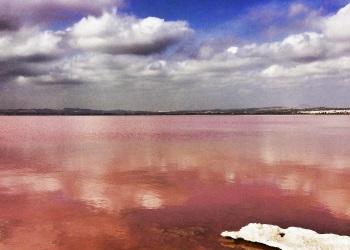 Розовое озеро в Торревьехе – лечебная соленая вода и красивая природа