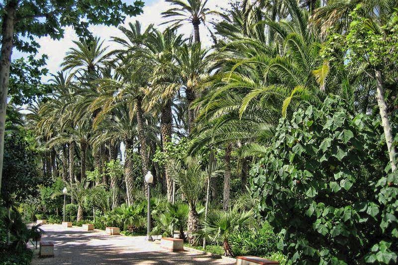Парк Эль-Пальмераль