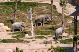 Зоопарк Терра-Натура